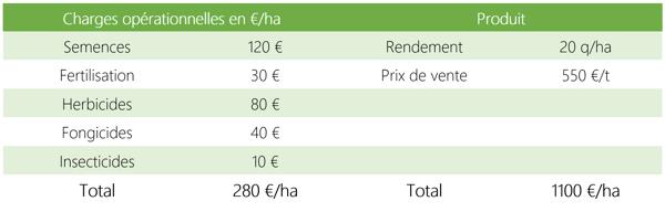 lentille marge brute coût production