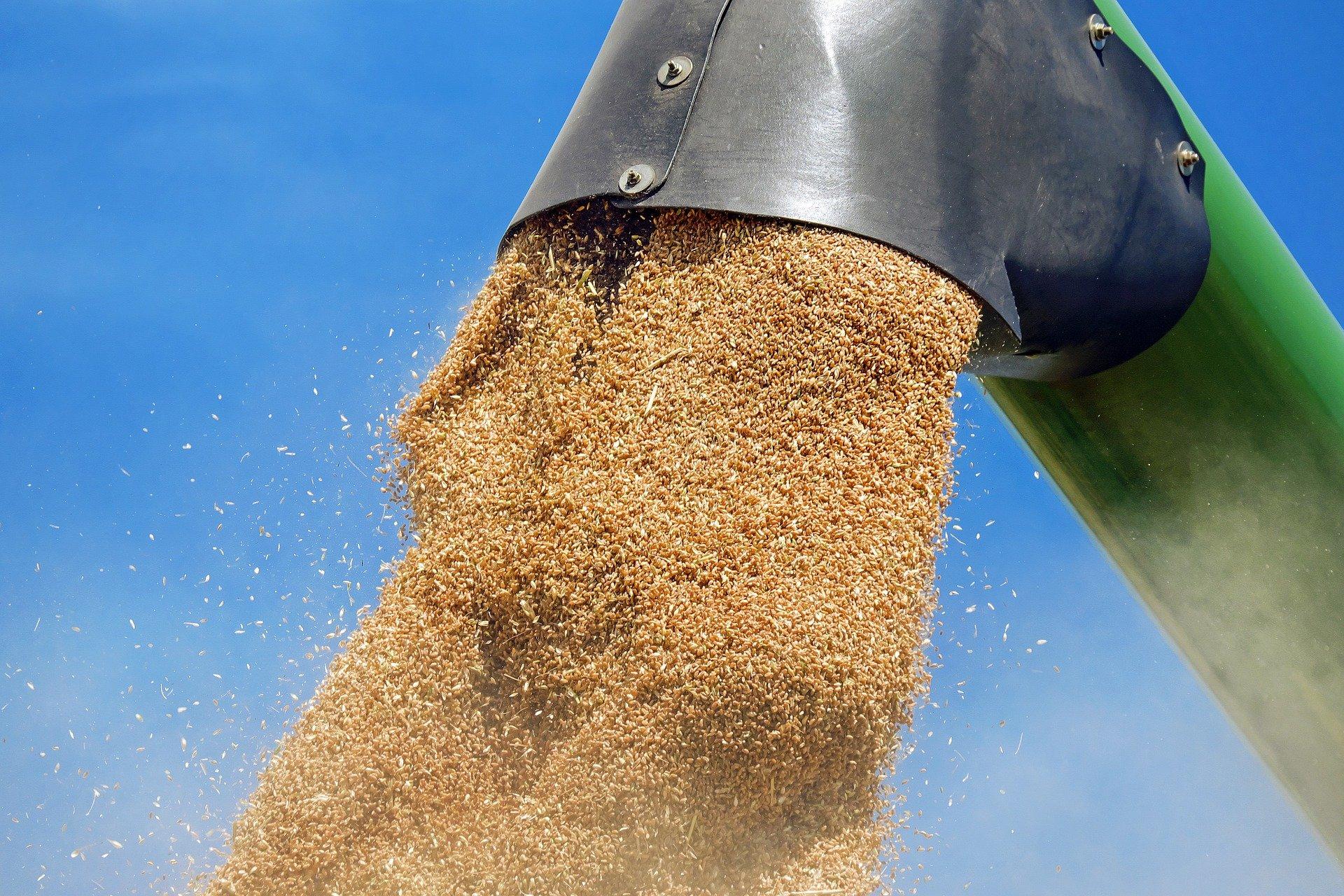 stockage blé récolte moisson silo