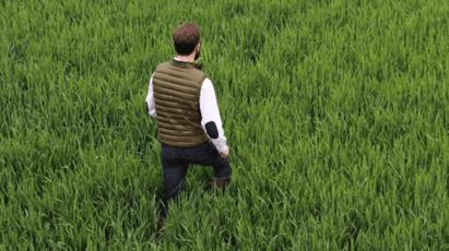 Agriculteur-tour-de-plaine