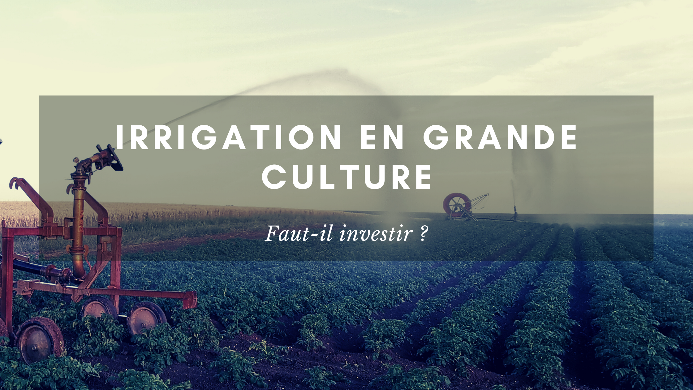 Investir dans l'irrigation en grandes cultures