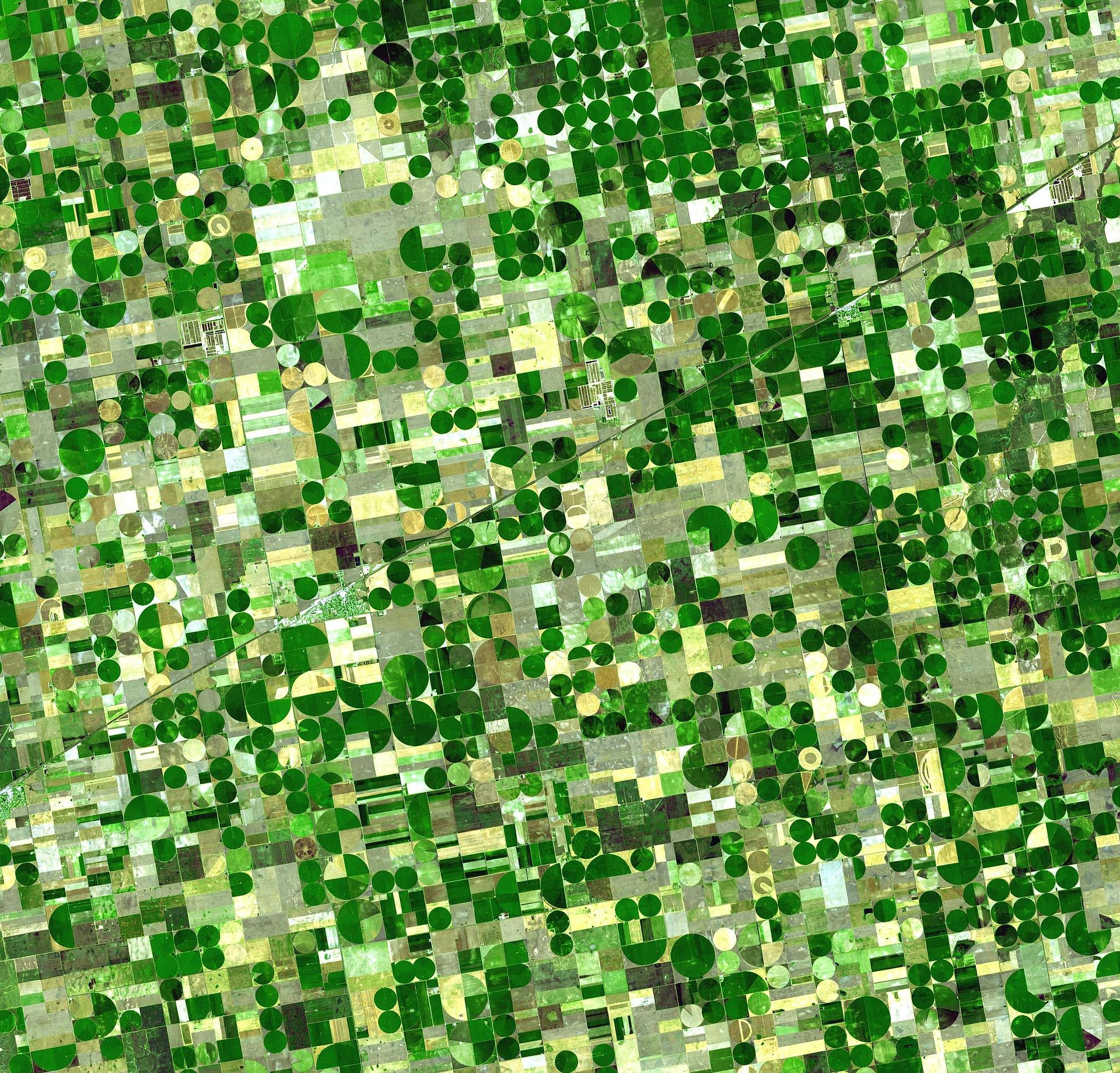 Images Sentinel en agriculture : comment ça marche ?