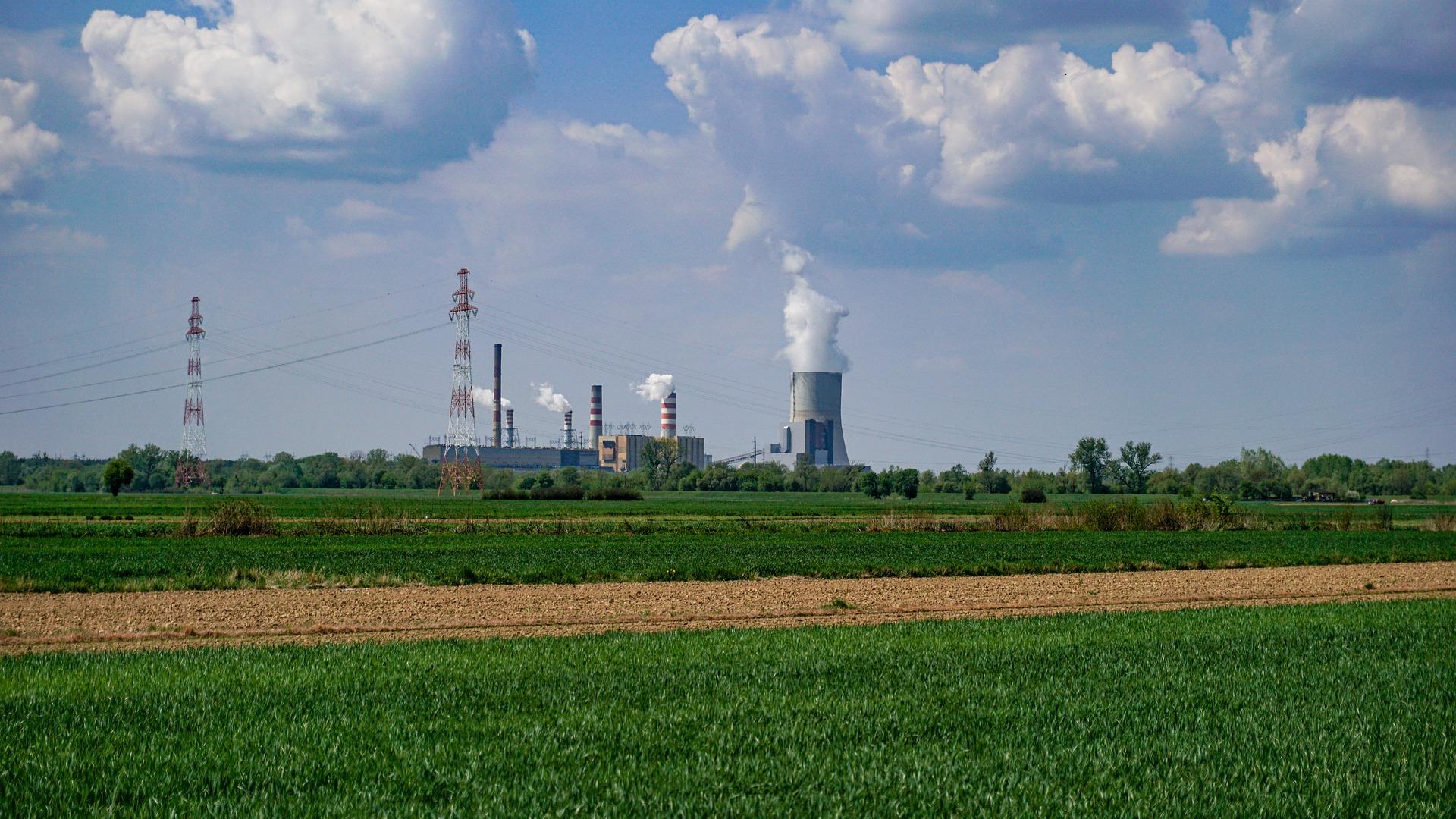 Label bas carbone : quels revenus pour les agriculteurs ?